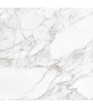 Kерамическая плитка Argenta Carrara White Shine 600×600