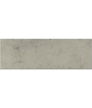 Плитка Porcelanite Dos 2216 Ceniza 22.5 x 67.5